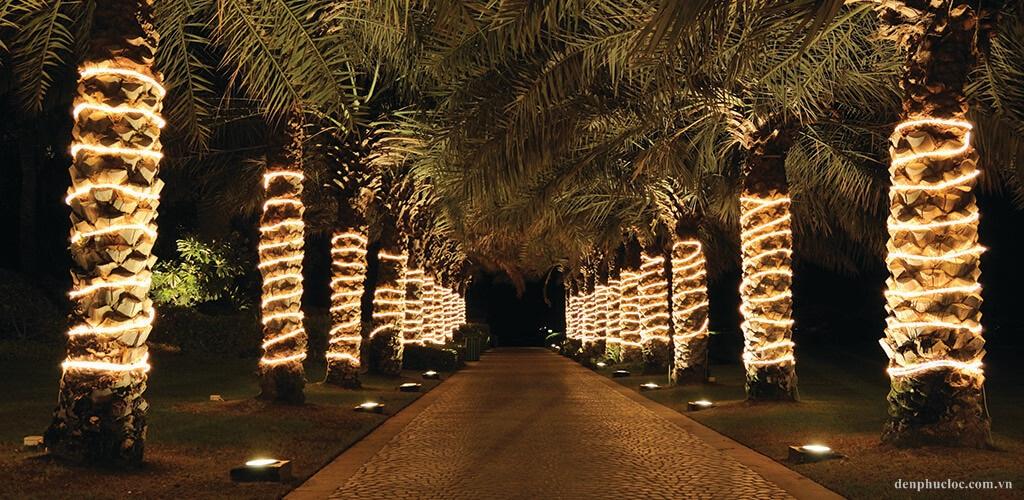 Đèn led dây chiếu sáng đường đi và trang trí cây